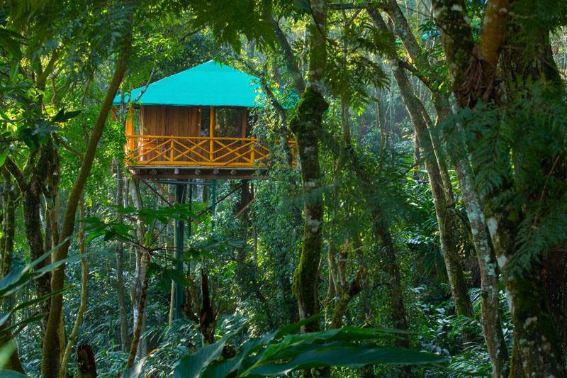 11-treehouse-exterior