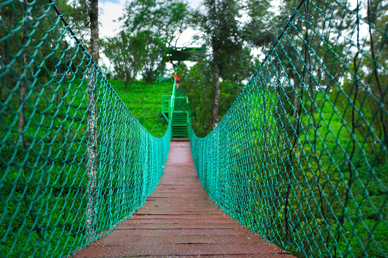 17-bridge-hanging-munnar