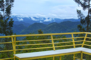 Dreamcatcher-resort-munnar-balconyview