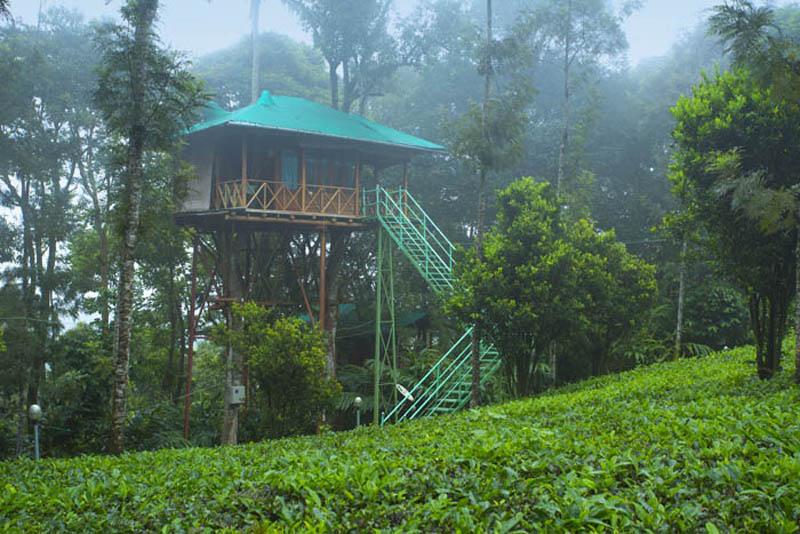 Tree Houses In Kerala Ravishing Kerala Holidays