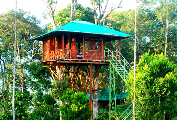 Best _Tree_Houses_in_Kerala_1