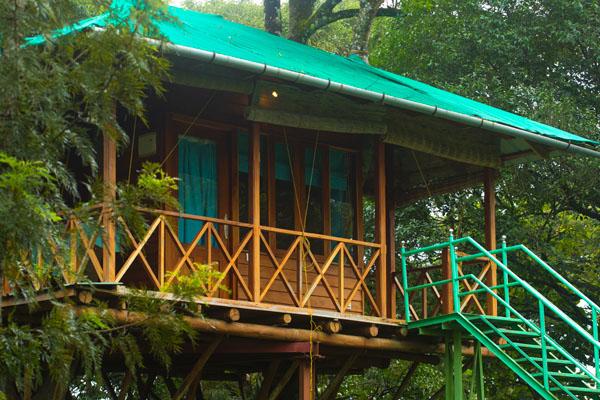 dreamcatcher-treehouse-munnar